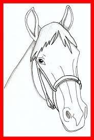 Reward Horse Face Coloring Page Stunning Pages For Realistic Head Ideas
