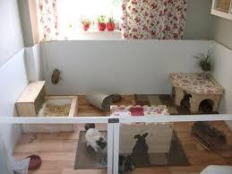 rabbit enclosure i like this idea it gives room to run