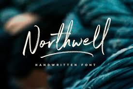 Northwell Font Script Fonts Creative Market