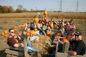 Pumpkin Patch Lawrence And Benton by Post Family Farm Fall Fun West Michigan Tourist Association