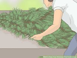 Aspirin Keep Christmas Trees Alive by How To Keep Your Christmas Tree Fresh Longer 13 Steps