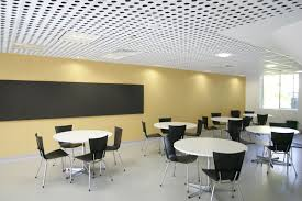 Tectum V Line Ceiling Panels by Drop In Ceiling Tiles Made From Perforated Panels Substrate Fibre