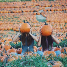 Kent Ohio Pumpkin Patches by Basic U0027s Guide To Fall Photo Shoots Her Campus