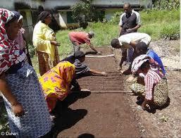 chambre agriculture 47 chambre d agriculture momo élu président comores infos