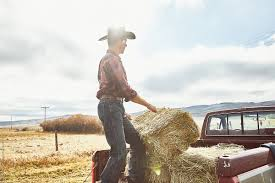 Cowboy Moving Hay Into His Truck | Stocksy United Cowboy Driving Truck Stock Photos Portfolio Usa Llc Build For Dallas Kyle Wright Bros Customs Couture 2014 Toyota Tundra 1794 Edition Vs Ford F150 King Fileamc Pickup Truck Kenoshasjpg Wikimedia Commons 2016 Grapevine Tx Trucking Peterbilt 388 Super 10 Dump Youtube 2019 Gmc Sierra Elevation Is A Posh Cadillac 95 Octane Mobile Hd Tech Ltd Bailey Western Star Cowboys Of The Waggoner Ranch Renault Ttruck Big Mike The Making Asphalt