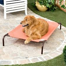 coolaroo dog bed coolaroo elevated pet bed replacement cover