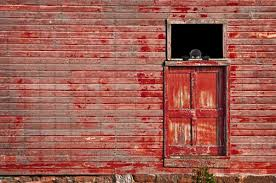 Who Steals A Barn? Iowa Thieves, That's Who - Modern Farmer 37 Best Goats Images On Pinterest Goat Shelter Farm Animals Clipart Bnyard Animals In A Barn Royalty Free Vector 927 Campagne Ferme Country Living All Men Are Enemiesall Comradesall Equal Pioneer George Washingtons Mount Vernon Nature Trees Fences Birds Fog Mist Deer Barn Farm Competion Farmer Bens Hog Blog Stories Of And Family Stock Horse Designs Learn Names Sounds Vegetables With Jobis Animal Inside Another Idea To Do It Without The Mezzanine But Milking Cows The Cow Milk Dairy Cowshed Video Maine Archives Flavorful Journeys