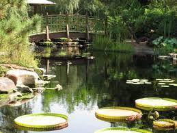 Jacksonville zoo gardens Picture of Jacksonville Zoo & Gardens