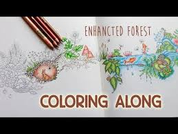 Coloring Along Enchanted Forest