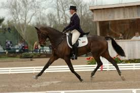 Horse World Riding Stables Coupon / Discount Coupon Planet ... Bullhide Belt Coupons Deals Direct Heaters Equine Couture Joy Saddle Pad Smart Scrubs Promo Code Best Coupons Western Schools Transfer Window Deals 2018 Up To 85 Off Gucci Verified Couponslivesunday Horse Equine Traformations Coupon Advertising Ideas Horseloverz Com Free Shipping August Shrockworks Discount March 2019 Apple Calendar Back In The Saddle Coupon Bob Evans Military Most Updated Lovesaccom Coupon Code 10 15 Horseloverz Competitors Revenue And Employees Owler
