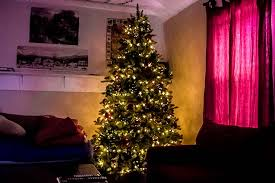 Dunhill Christmas Trees by A New Dunhill Fir Artificial Christmas Tree U0026 Some Snow