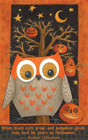 Cute Owl Car Floor Mats by 4332 Best I Love Owls Images On Pinterest Owl Tattoos Drawings