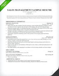 Senior Sales Executive Resume Template Manager Sample Writing Tips