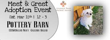 Crossed Paws Meet & Greet at Pottery Barn Galleria Dallas