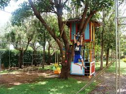 Backyard Zip Line | Best Images Collections HD For Gadget Windows ... Backyard Zip Line For Kids A The Trailhead Photo On Remarkable Zipline Kit In Outdoor Activity Toys Nova Natural Image From Treehouse Youtube Alien Flier 2016 X2 Installation Eagle 70foot With Seat Build Your Own Gear Picture Wonderful Seated Hammacher Schlemmer Backyardziplinetsforkids Play Pinterest Home Design Ultimate Torpedo Swingsetmall With 25 Unique Line Backyard Ideas On Zipline Dogs And Yard Design Village For My Kids 150