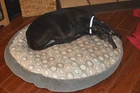 Kirkland Dog Beds by No Pattern Used Dog Bed Cover Costco Round Dog Beg Pattern