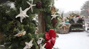 Christmas Tree Shop East Falmouth Ma by 7 Best Things To Do In Cape Cod During A Winter Vacation