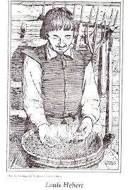 100 Louis Hebert Hbert Et Marie Rollet Genealogy Canadian History