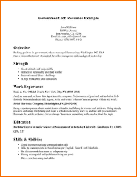 Resume Example Government Job Ixiplay Free Federal