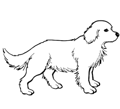 Click To See Printable Version Of Golden Retriever Puppy Coloring Page Categories Dogs