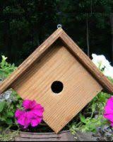 Free Bird Table Plans by 58 Best Bird House Plans Images On Pinterest Bird House Plans