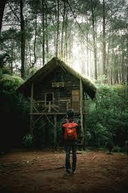 100 House In Forest Person Standing In Front Of House Located In Forest Photo