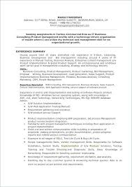 Sales Support Analyst Sample Resume