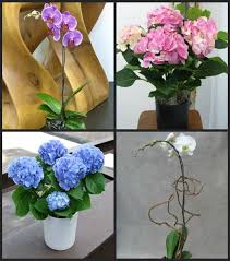 43 best NYC Fresh Cut Flowers images on Pinterest