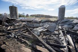 Barn Fire Near Woodsboro Kills Four Billy Goats, Destroys Family's ... Elgin History Museum Fire Department 150th Anniversary And Phoenix Falconry Barn Quilts Destroys Boonsboro Barn Used For Autobody Shop Local News Care Of Livestock Horses In Disasters Calaveras Animal Falls Wikipedia 18 Horses Killed Illinois Fire Abc7com Lefire 5 Il 02jpg Wikimedia Commons Youtube 04jpg Sales Cause Undetermined Take A Peek Inside This Stunning Fullystocked Party