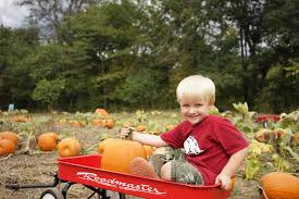 Pumpkin Patch Greenbrier Arkansas by Roseberry Farms