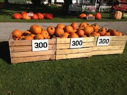 Gust Brothers Pumpkin Farm by Services And Products Gust Brother U0027s Pumpkin Farm Llc