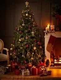 7ft Christmas Tree Uk by 7ft Traditional Green Christmas Tree M U0026s