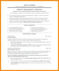 Resume Head Line Strong Headline Examples 9 For