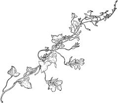to see printable version of Snapdragon Vine Coloring page