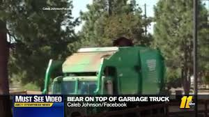 Hungry Bear Rides Garbage Truck | Abc11.com Garbage Truck Videos For Children L Picking Up Birthday Trash San Jose Leaders Propose Crimespying Garbage Trucks Abc7newscom Councilman Wants To End Frustration Of Driving Behind Trucks Hybrid Now On Sale In Us Saving Fuel While Hauling Does City Have Rules On Trash Truck Noise City Themercurycom Citys Refuse Fleet Under Pssure Zuland Obsver Time Pick The Trash Greyson Speaks Delighted By A Amazoncom Bruder Toys Man Side Loading Orange Evolution Of Animes Colorful Cans