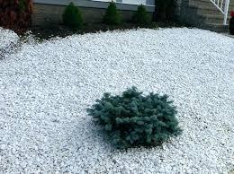 White Marble Rock For Landscaping Rocks Sale Garden