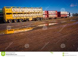 100 Cattle Truck Truck Roadtrain Stock Image Image Of Colours 84107045