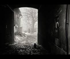 Cat Sitting Near Door Canvas Print Art By WojtekZet