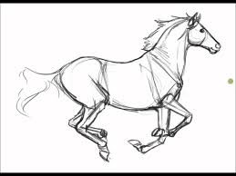 1440x1080 Ref Less Horse Sketches