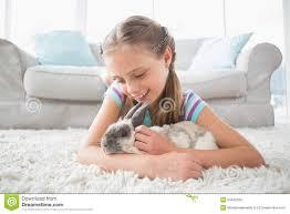 mädchen das mit kaninchen im wohnzimmer spielt stockfoto