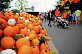 Oak Glen Pumpkin Patch Address by Think Outside The Haunted House Daily Southtown