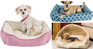 Petco Pet Beds by Up To 50 Off Petco Dog Beds Free Shipping Today Only