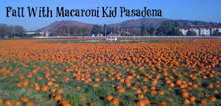 Pumpkin Patch Pasadena Area by 2015 Pumpkin Patch Guide From Los Angeles County To Orange County