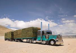 Image Result For Cabover Trucks Pics | Cabovers | Pinterest ... Roadside California I5 Rest Area Pt 4 A Couple Of Dirksen Units Transportation Manteca Ca Inrstate 5 South Tejon Pass 13 Heartland Express In Williams To Redding 2 Old School Cabovers Trucks Pinterest Rigs And Kalikid2013s Most Recent Flickr Photos Picssr North From Arcadia 1 Cabover Freightliner Suarez Trucking English Version Youtube