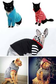 cat hoodies 10 cool cat hoodies your cat will want to wear or not cat