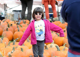 Pumpkin Patch Stamford Ct by 45th Annual Pumpkin Patch Event Greenwichtime