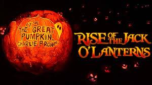 Great Pumpkin Blaze by Rise Of The Jack O U0027 Lanterns 2016 5 000 Hand Carved Pumpkins Old