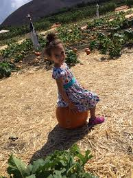 Moorpark Pumpkin Patch Underwood Family Farms by Mothers Of The Valley Last Call For A Pumpkin Patch
