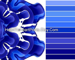 Royal Blue Bathroom Wall Decor best 25 royal blue bathrooms ideas on pinterest delphinium
