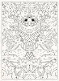 Secret Garden 20 Postcards Johanna Basford 9781856699464 Amazon Books Owl Coloring PagesColoring SheetsAdult
